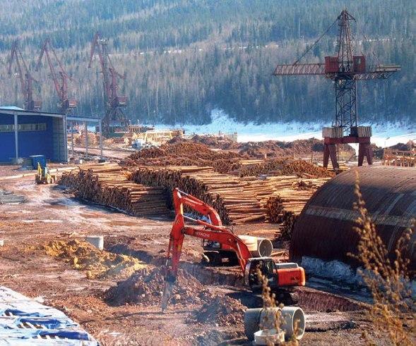 Запрет на кругляк будущее лесопереработки на Дальнем Востоке под угрозой
